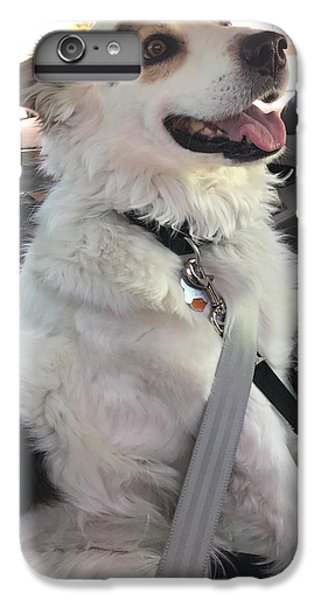Buckle Up IPhone 6s Plus Case