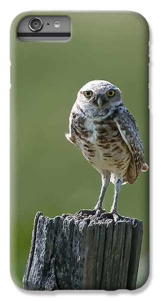 IPhone 6s Plus Case featuring the photograph Burrowing Owl by Gary Lengyel