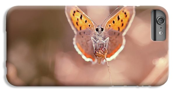 Butterfly Beauty IPhone 6s Plus Case
