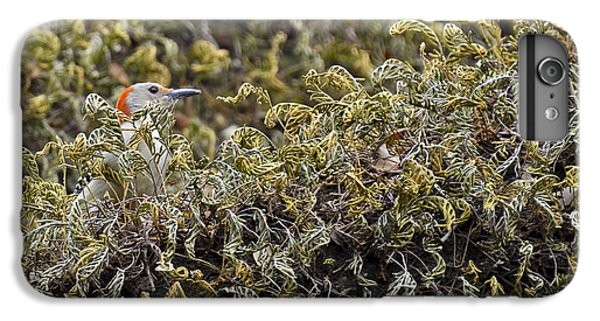 Camouflaged Red-bellied Woodpecker IPhone 6s Plus Case by Carolyn Marshall