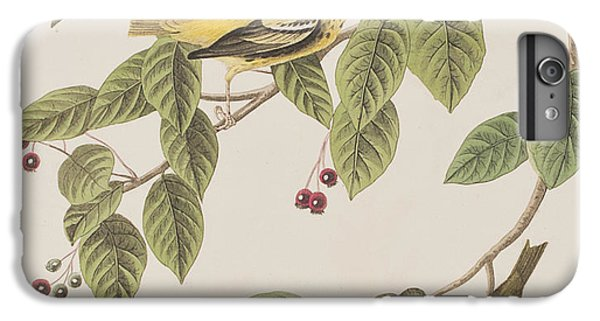 Carbonated Warbler IPhone 6s Plus Case by John James Audubon