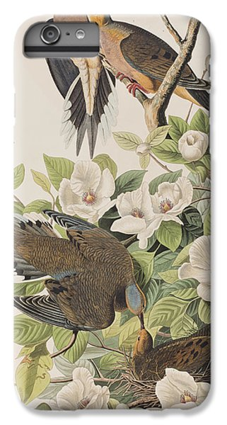 Carolina Turtle Dove IPhone 6s Plus Case by John James Audubon