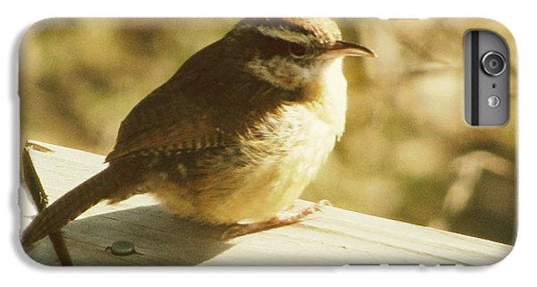 Wren iPhone 6s Plus Case - Carolina Wren by Amy Tyler