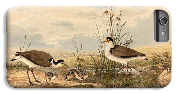 Lapwing iPhone 6s Plus Case - Cayley Masked Lapwing. Vanellus Miles by Neville Henry Penniston