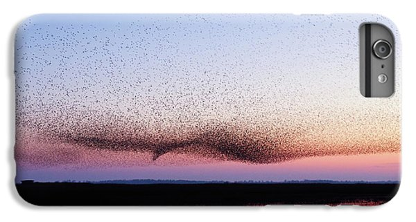 Starlings iPhone 6s Plus Case - Chaos In Motion - Bird Of Many Birds by Roeselien Raimond
