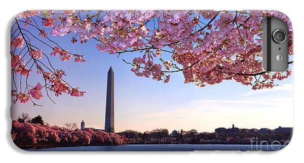 Washington D.c iPhone 6s Plus Case - Cheery Cherry Dc by Olivier Le Queinec