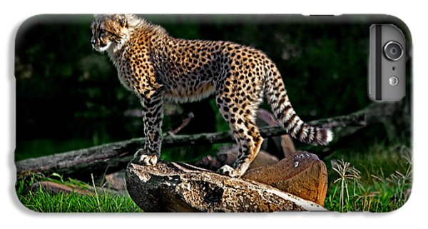 Cheetah Cub Finds Her Pride Rock IPhone 6s Plus Case by Miroslava Jurcik