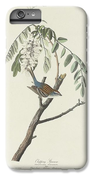 Chipping Sparrow IPhone 6s Plus Case by Dreyer Wildlife Print Collections