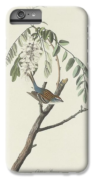 Chipping Sparrow IPhone 6s Plus Case by Rob Dreyer