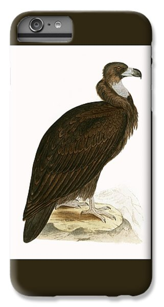 Cinereous Vulture IPhone 6s Plus Case by English School