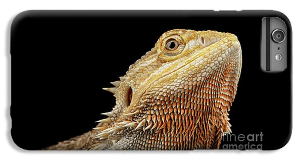 Closeup Head Of Bearded Dragon Llizard, Agama, Isolated Black Background IPhone 6s Plus Case