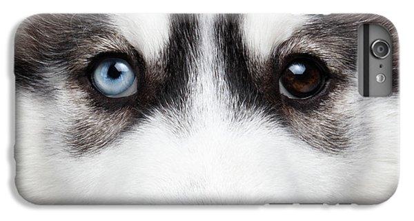 Dog iPhone 6s Plus Case - Closeup Siberian Husky Puppy Different Eyes by Sergey Taran