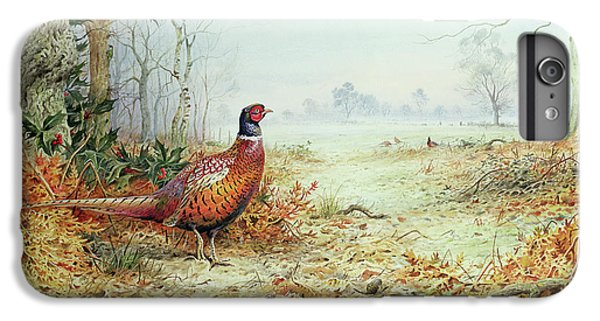 Cock Pheasant  IPhone 6s Plus Case by Carl Donner