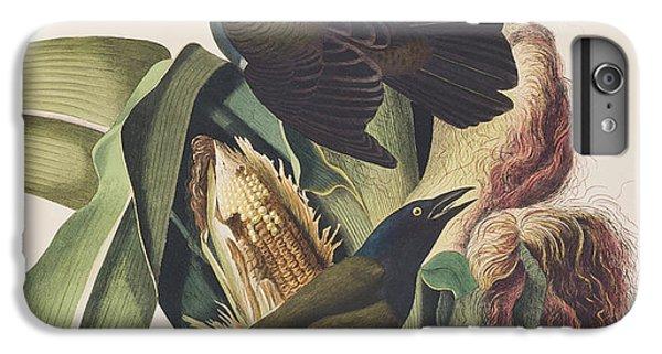 Common Crow IPhone 6s Plus Case by John James Audubon