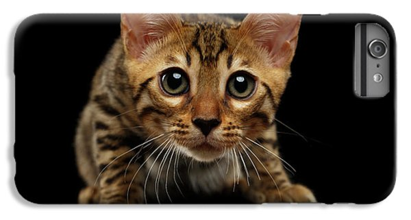 Crouching Bengal Kitty On Black  IPhone 6s Plus Case by Sergey Taran