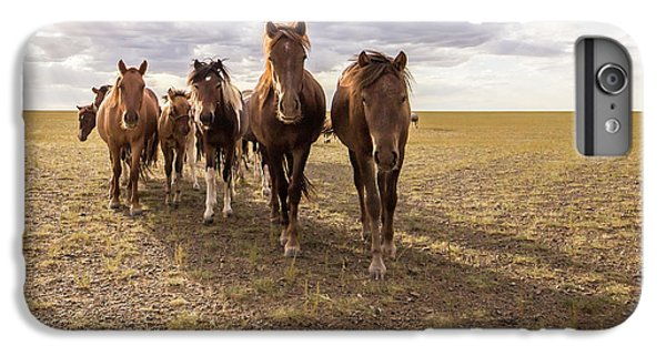 IPhone 6s Plus Case featuring the photograph Curious Horses by Hitendra SINKAR