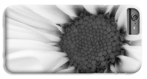 Daisy iPhone 6s Plus Case - Daisy Flower Macro by Tom Mc Nemar