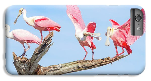 Day Of The Spoonbill  IPhone 6s Plus Case by Mark Andrew Thomas
