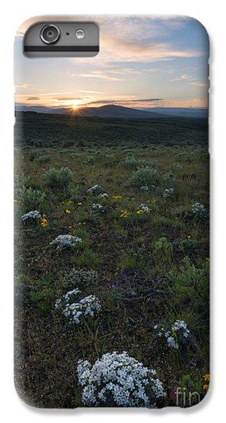 Desert Sunburst IPhone 6s Plus Case