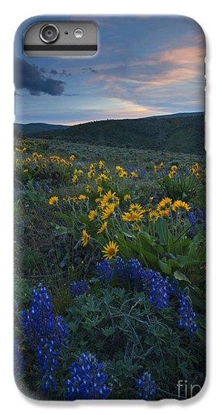 Desert Sunset iPhone 6s Plus Case - Desert Wildflower Sunset by Mike Dawson