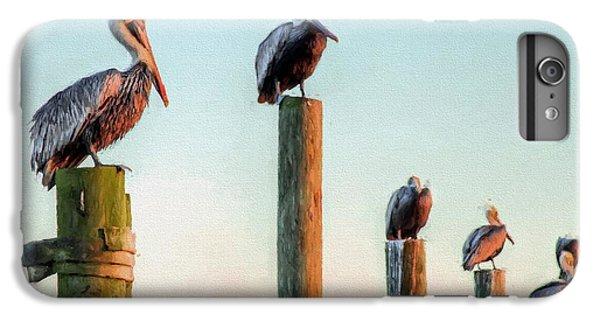 Destin Pelicans-the Peanut Gallery IPhone 6s Plus Case