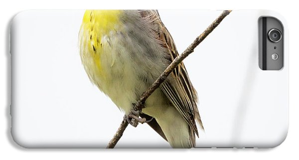 Dickcissel  IPhone 6s Plus Case