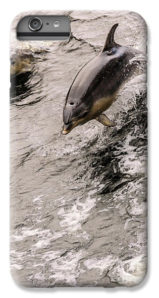 Dolphins IPhone 6s Plus Case