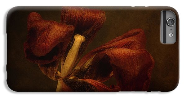 Tulip iPhone 6s Plus Case - Dried Tulip Blossom 2 by Scott Norris