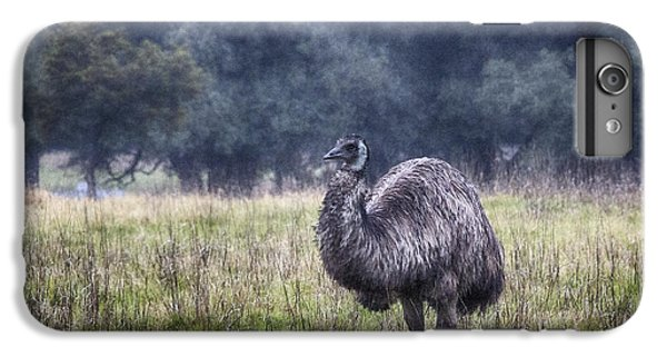 Early Morning Stroll IPhone 6s Plus Case by Douglas Barnard