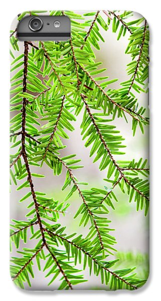 IPhone 6s Plus Case featuring the photograph Eastern Hemlock Tree Abstract by Christina Rollo