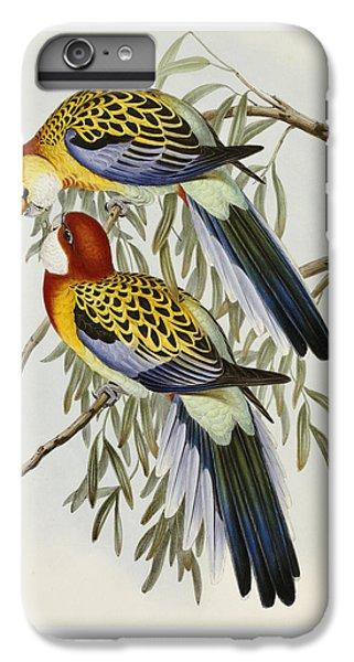 Eastern Rosella IPhone 6s Plus Case by John Gould