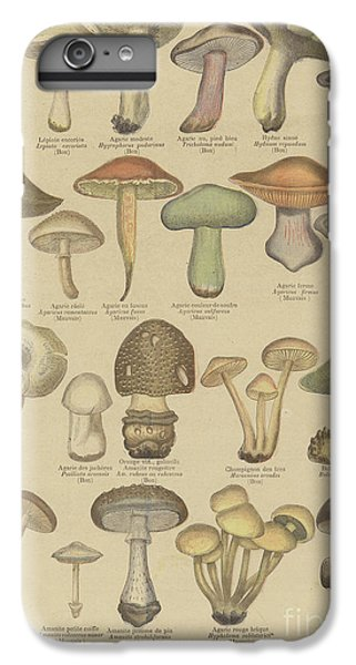Edible And Poisonous Mushrooms IPhone 6s Plus Case by French School