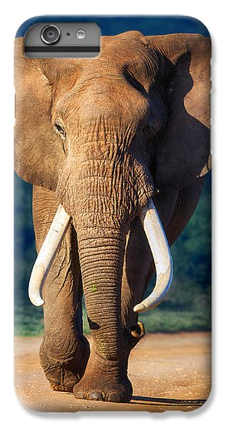 Bass iPhone 6s Plus Case - Elephant Approaching by Johan Swanepoel