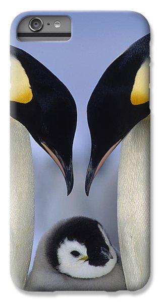 Emperor Penguin Family IPhone 6s Plus Case