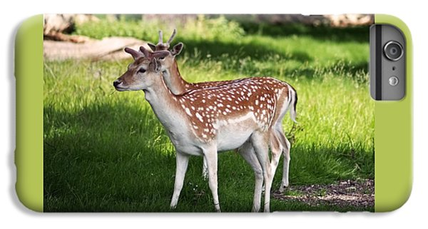 Fallow Deer In Richmond Park IPhone 6s Plus Case