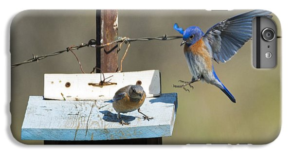 Family Time IPhone 6s Plus Case by Mike Dawson