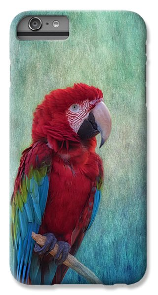 Scarlet iPhone 6s Plus Case - Feathered Friend by Kim Hojnacki