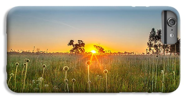 Fields Of Gold IPhone 6s Plus Case by Az Jackson