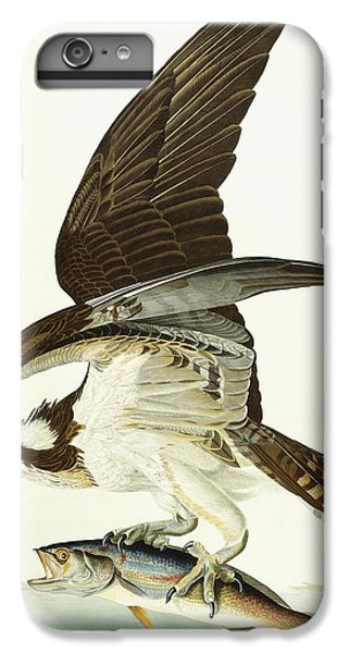 Fish Hawk IPhone 6s Plus Case by John James Audubon