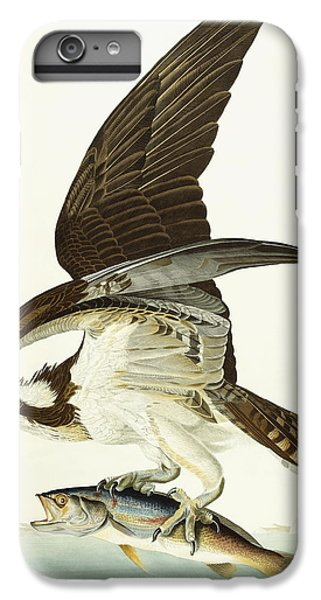 Fish Hawk IPhone 6s Plus Case