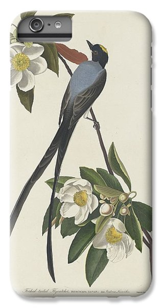 Flycatcher iPhone 6s Plus Case - Forked-tail Flycatcher by Dreyer Wildlife Print Collections