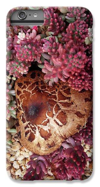 Fungus And Succulents IPhone 6s Plus Case