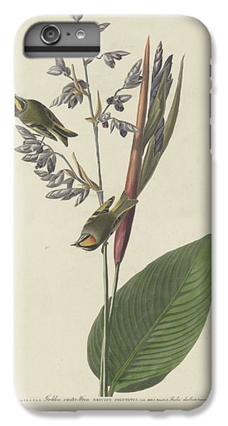 Golden-crested Wren IPhone 6s Plus Case by Dreyer Wildlife Print Collections