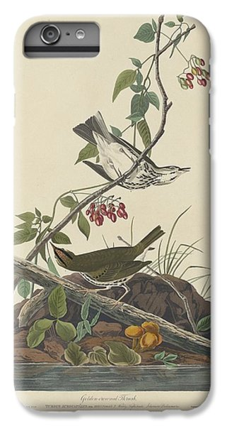 Golden-crowned Thrush IPhone 6s Plus Case by Dreyer Wildlife Print Collections