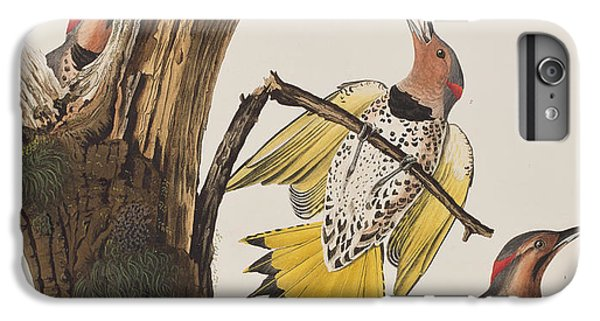 Golden-winged Woodpecker IPhone 6s Plus Case by John James Audubon