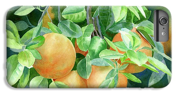 Grapefruit iPhone 6s Plus Case - Grapefruit With Background by Sharon Freeman