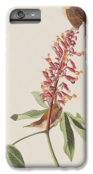 Wren iPhone 6s Plus Case - Great Carolina Wren by John James Audubon