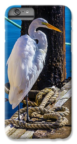 Great White Heron On Boat Dock IPhone 6s Plus Case by Garry Gay