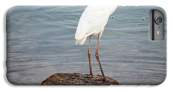 Great White Heron With Fish IPhone 6s Plus Case by Elena Elisseeva