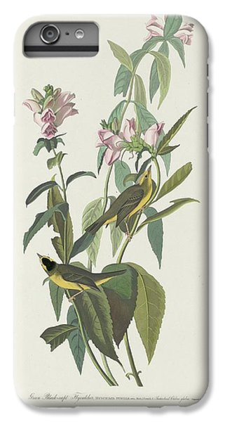 Flycatcher iPhone 6s Plus Case - Green Black-capt Flycatcher by Dreyer Wildlife Print Collections